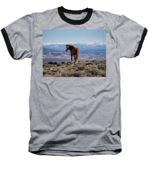 Wild Stallion Of Sand Wash Basin Baseball T-Shirt by Nadja Rider
