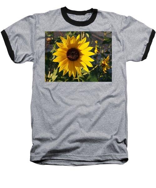 Wild Sunflower Baseball T-Shirt by Nadja Rider