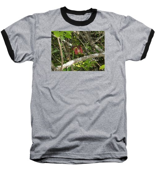 Baseball T-Shirt featuring the photograph Wildflower by Robert Nickologianis