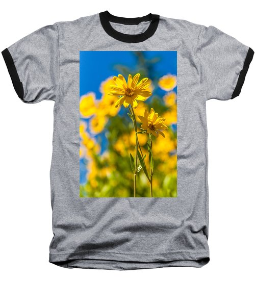 Wildflowers Standing Out Baseball T-Shirt