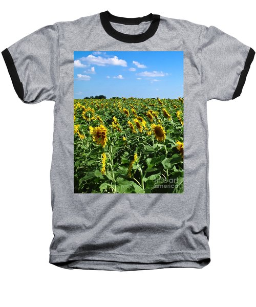Windblown Sunflowers Baseball T-Shirt