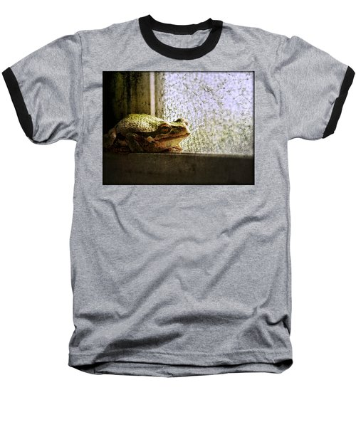Windowsill Visitor Baseball T-Shirt