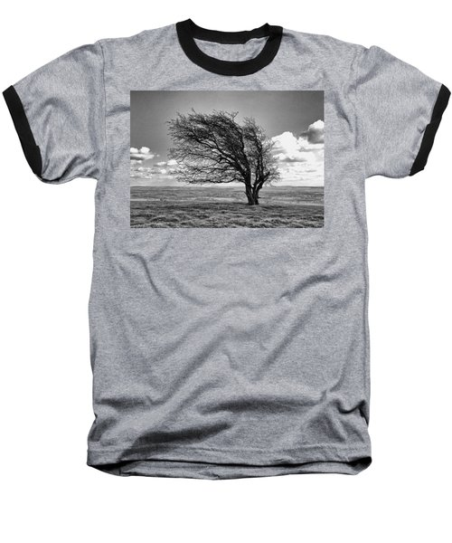 Windswept Tree On Knapp Hill Baseball T-Shirt