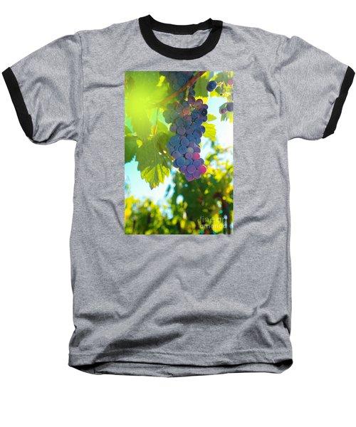 Wine Grapes  Baseball T-Shirt by Jeff Swan