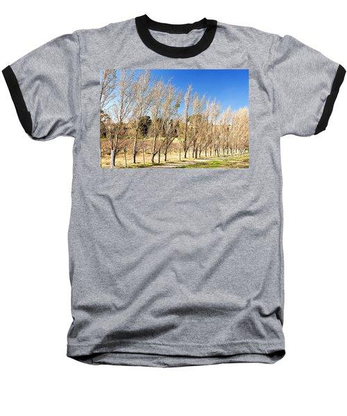 Winery Baseball T-Shirt
