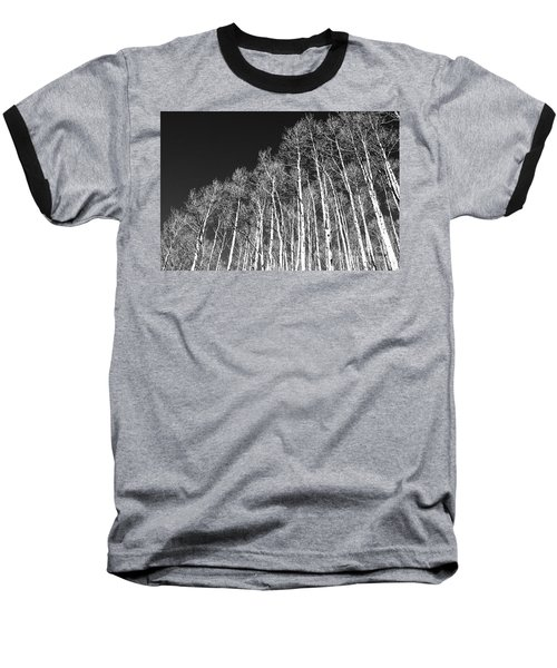 Baseball T-Shirt featuring the photograph Winter Aspens by Roselynne Broussard