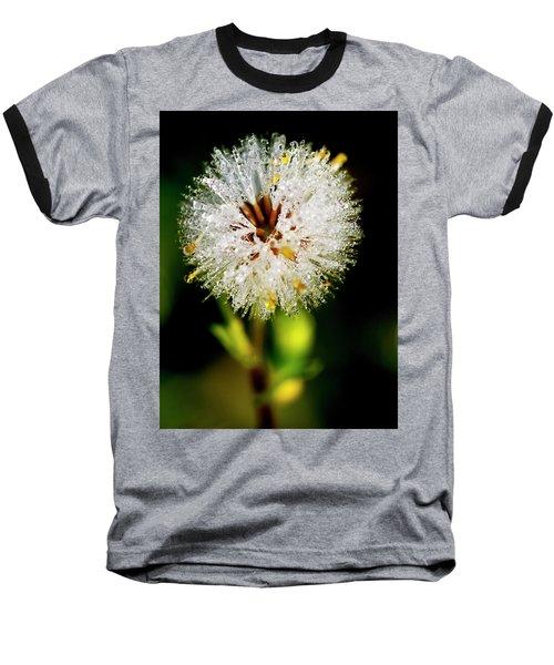 Baseball T-Shirt featuring the photograph Winter Dandelion by Pedro Cardona
