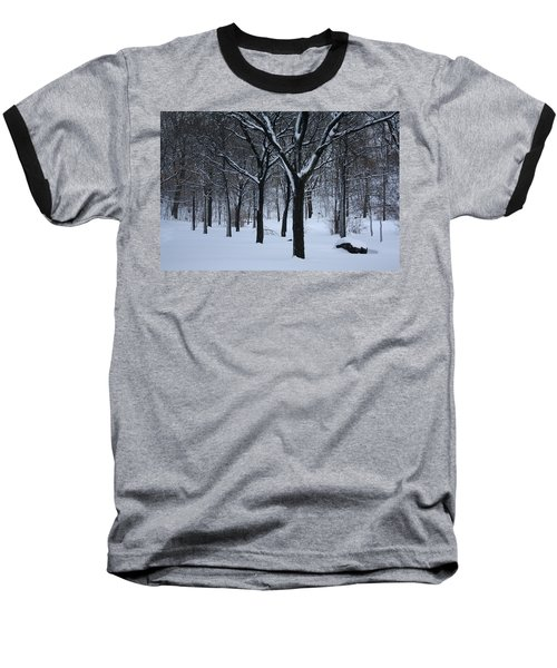 Baseball T-Shirt featuring the photograph Winter In The Park by Dora Sofia Caputo Photographic Art and Design