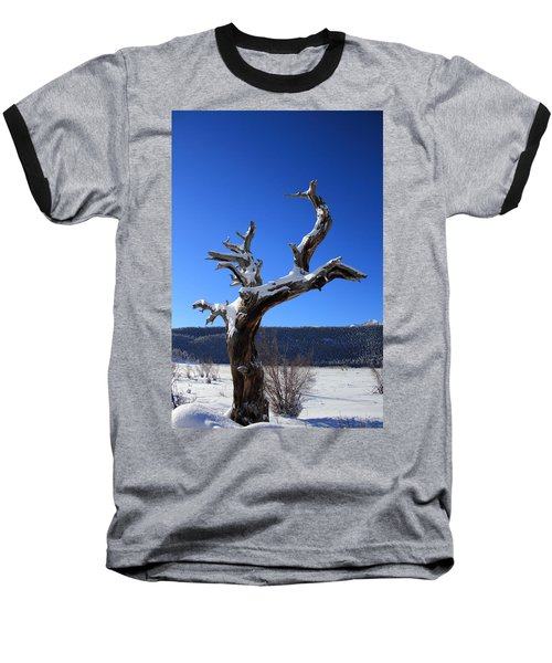 Winter In The Rockies Baseball T-Shirt