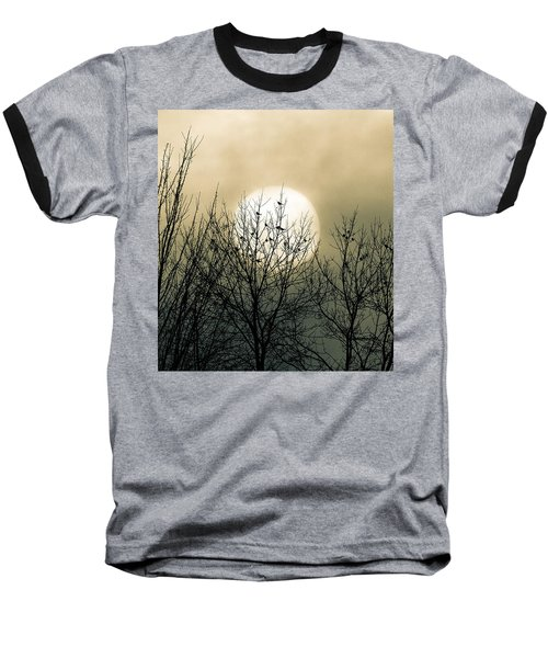 Winter Into Spring Baseball T-Shirt