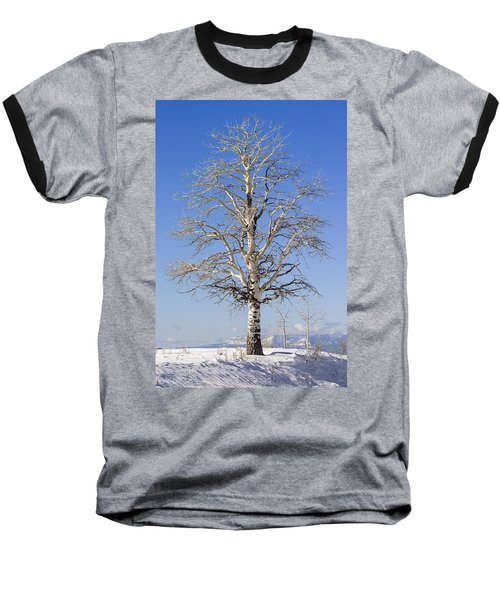 Winter Baseball T-Shirt by Muhie Kanawati
