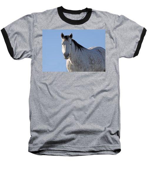Winter Pony Baseball T-Shirt