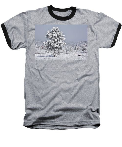 Winter Solitude Baseball T-Shirt