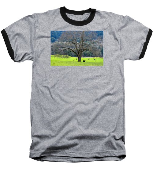 Winter Tree With Cows By The Umpqua River Baseball T-Shirt by Michele Avanti