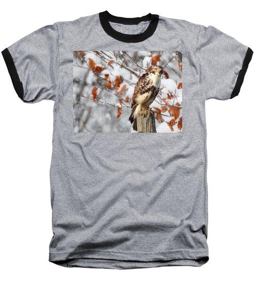 Winter Visitor  Baseball T-Shirt