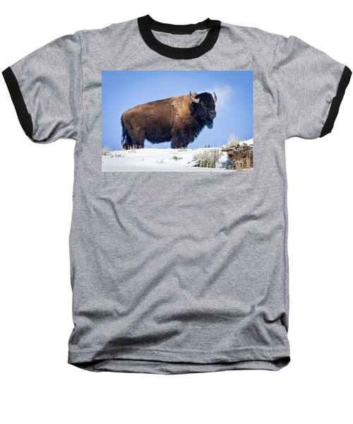 Baseball T-Shirt featuring the photograph Winter Warrior by Jack Bell
