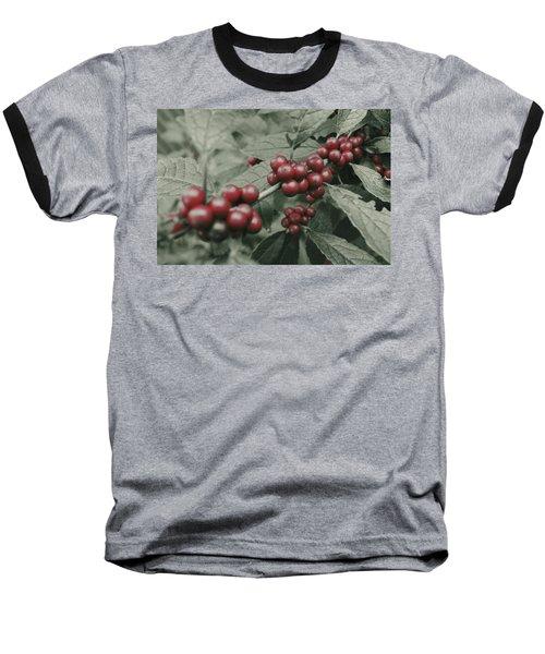 Winterberry Baseball T-Shirt