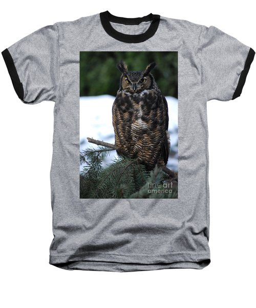 Baseball T-Shirt featuring the photograph Wise Old Owl by Sharon Elliott