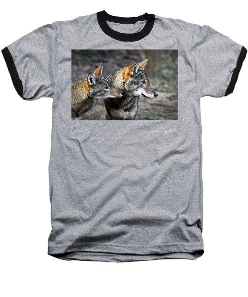 Wolf Alert Baseball T-Shirt by Steve McKinzie