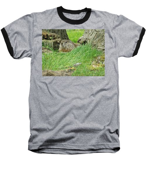 Woodchuck 2 Baseball T-Shirt
