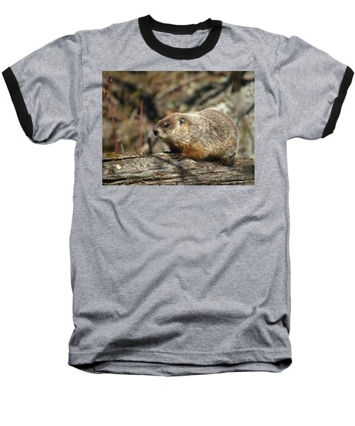 Baseball T-Shirt featuring the photograph Woodchuck by James Peterson
