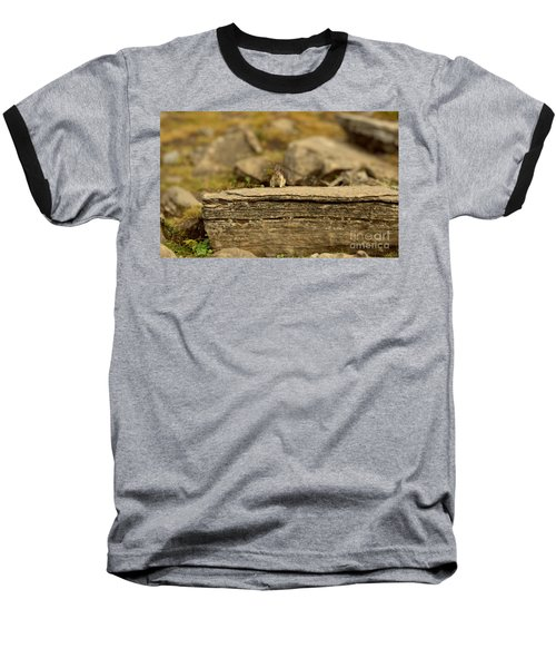 Woodland Critter Baseball T-Shirt