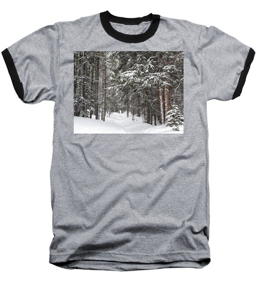 Woods In Winter Baseball T-Shirt by Eric Glaser