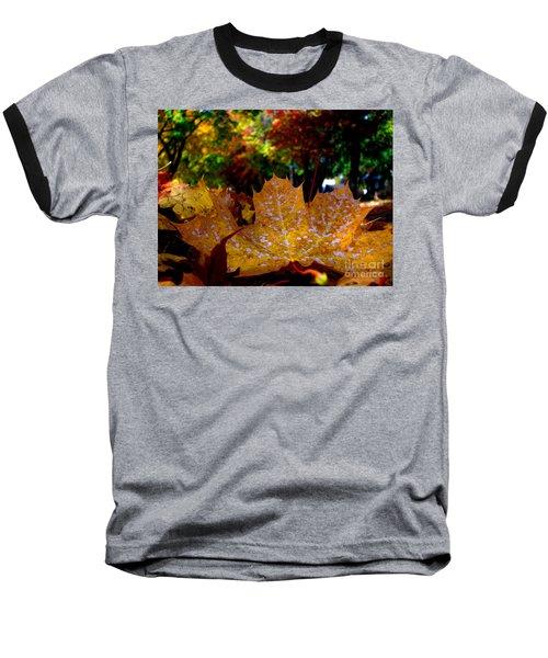 Year After Year Baseball T-Shirt