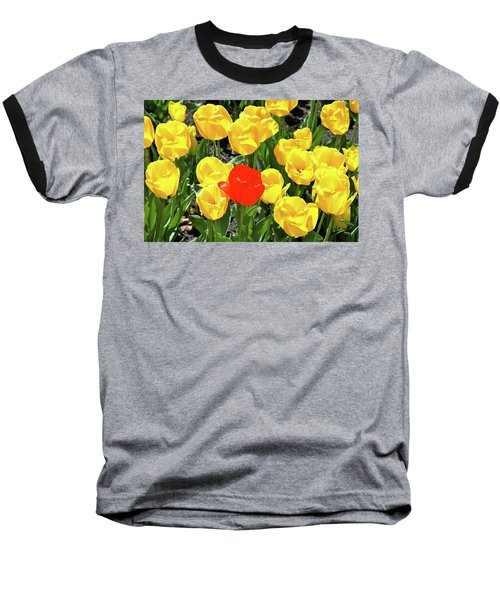 Yellow And One Red Tulip Baseball T-Shirt
