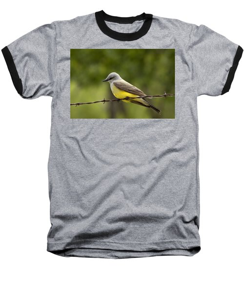 Yellow-bellied Fence-sitter Baseball T-Shirt by Gary Holmes
