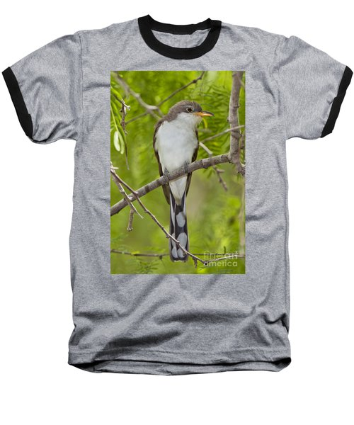 Yellow-billed Cuckoo Baseball T-Shirt