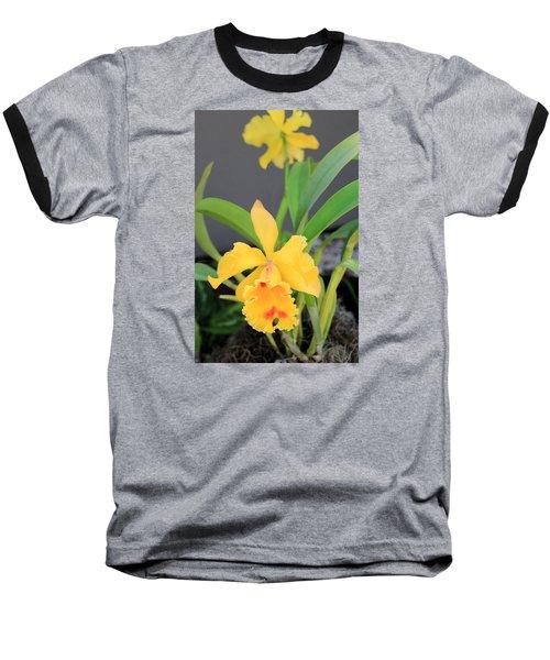 Baseball T-Shirt featuring the photograph Yellow Cattleya Orchid by Rosalie Scanlon