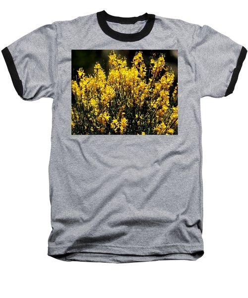 Baseball T-Shirt featuring the photograph Yellow Cluster Flowers by Matt Harang