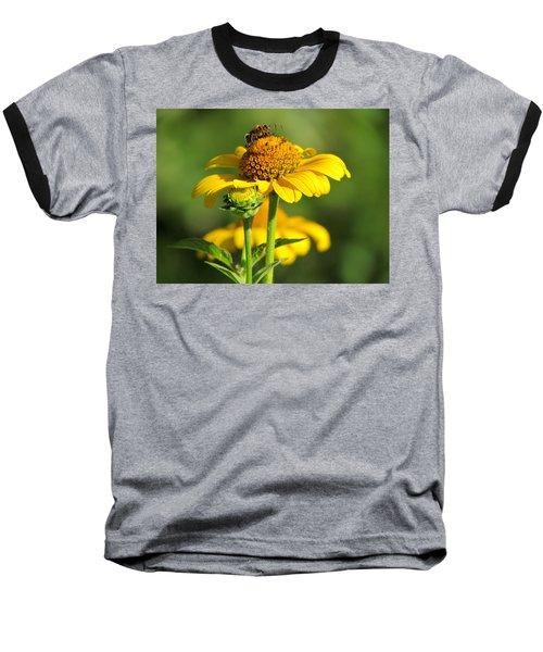 Yellow Daisy Baseball T-Shirt by David T Wilkinson