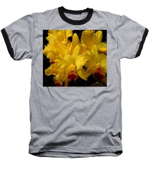 Yellow Folds Baseball T-Shirt