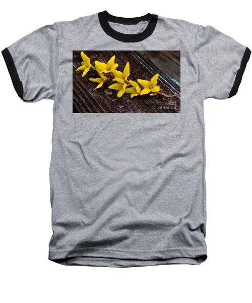 Yellow Forsythia Baseball T-Shirt