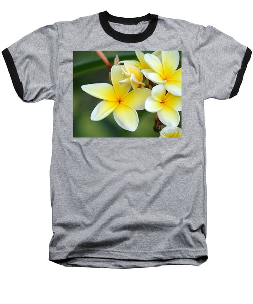 Yellow Frangipani Flowers Baseball T-Shirt
