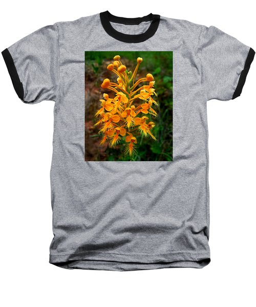 Wild Yellow Fringed Orchid Baseball T-Shirt by William Tanneberger