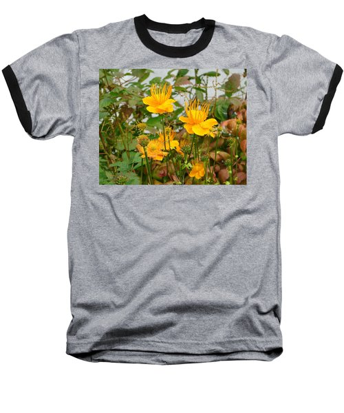 Baseball T-Shirt featuring the photograph Yellow Is Golden by Lew Davis