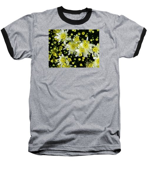 Baseball T-Shirt featuring the photograph Yellow Mums by Lyric Lucas