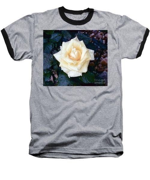 Baseball T-Shirt featuring the photograph Yellow Rose At Dawn by Alys Caviness-Gober