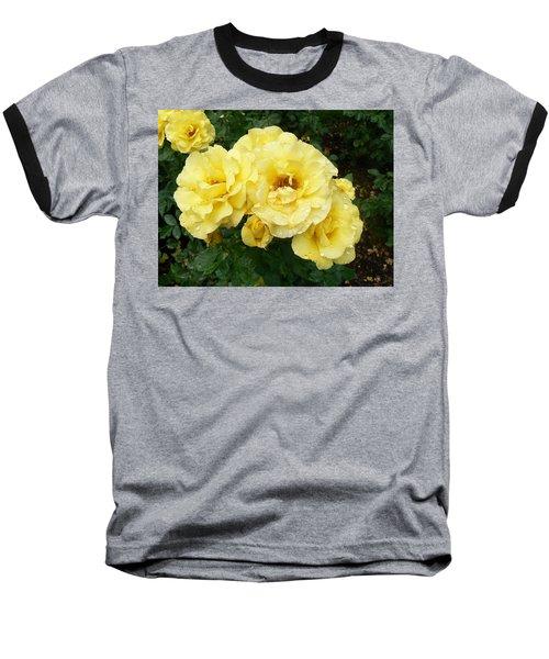 Yellow Rose Of Pa Baseball T-Shirt by Michael Porchik