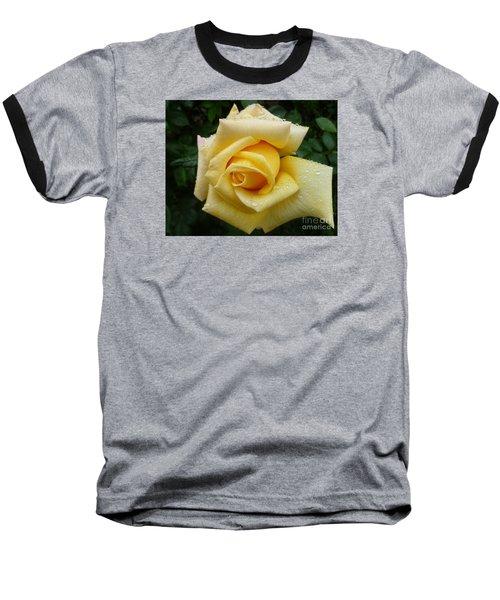 Yellow Rose Say Goodbye Baseball T-Shirt by Lingfai Leung