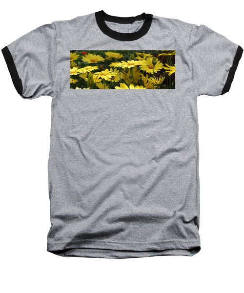 Yellow Splendor Baseball T-Shirt