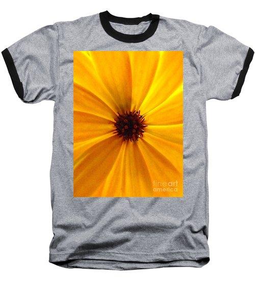 Yellow Splendour Baseball T-Shirt by Clare Bevan
