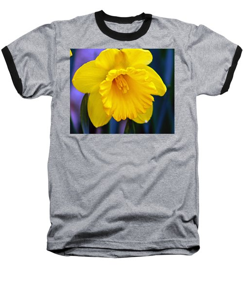 Baseball T-Shirt featuring the photograph Yellow Spring Daffodil by Kay Novy
