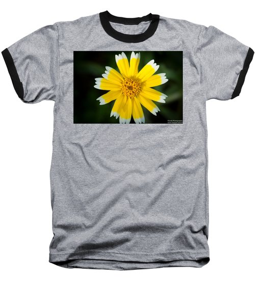 Yellow Sunshine  Baseball T-Shirt