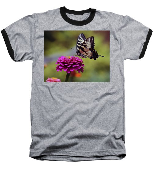 Yellow Tiger Swallowtail Butterfly Baseball T-Shirt by Kay Novy