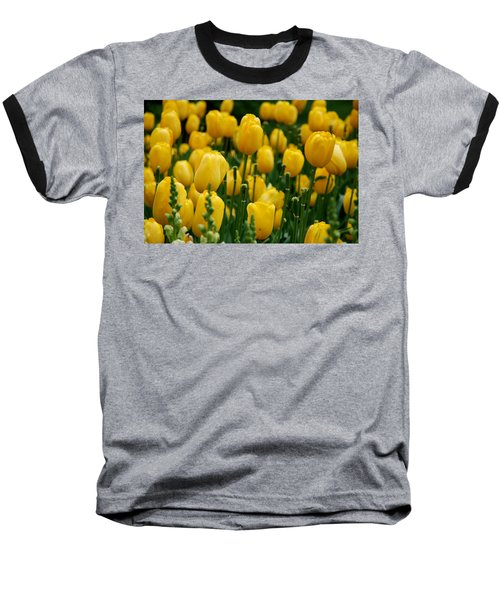 Yellow Tulip Sea Baseball T-Shirt by Jennifer Ancker