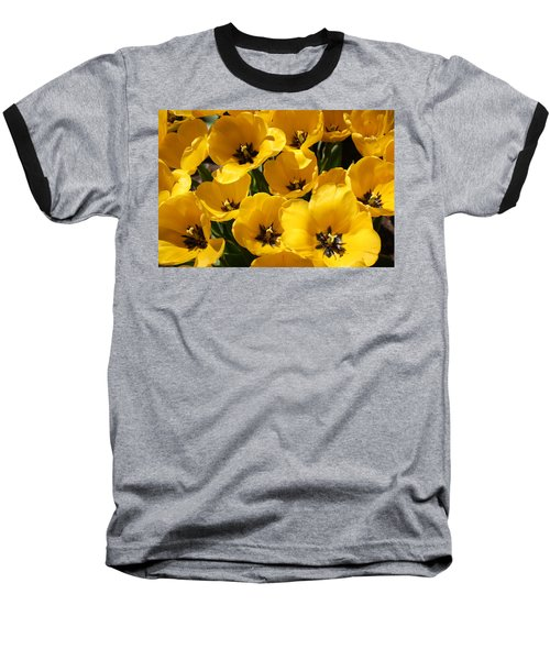 Baseball T-Shirt featuring the photograph Golden Tulips In Full Bloom by Dora Sofia Caputo Photographic Art and Design